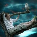 tree-climber-klein